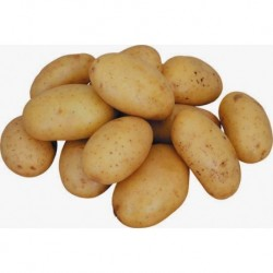 Potatoポテト (1kg)