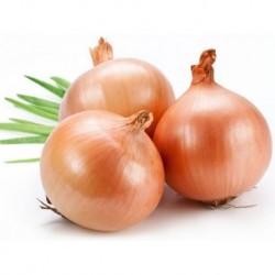 Onion Whole玉ねぎ (1kg)